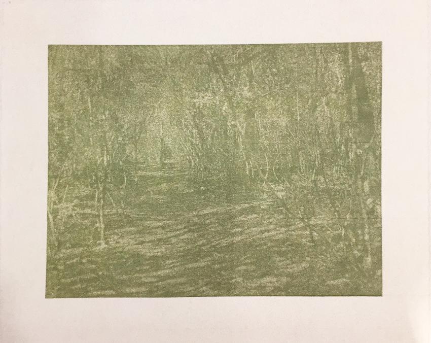 Franz Gertsch, Bagatelle I - Waldweg, 2002, Holzschnitt in Warmen Grün. Eine Platte. Handabzug auf Kumohadamashi-Japanpapier von Heizaburo Iwano, 76 x 103 cm / 107 x 130 cm