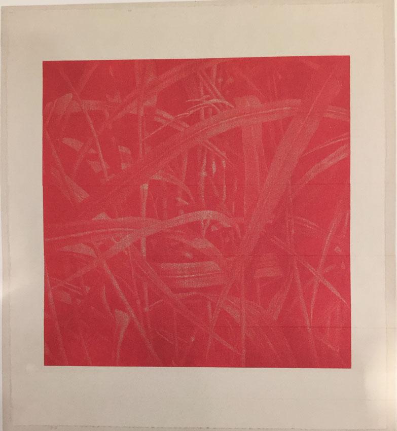 Franz Gertsch, Gräser ll Rot - Johannisbeerrot (Naphtol), 2004, Holzschnitt. Eine Platte. Handabzug auf Kumohadamashi - Japanpapier von Heizaburo Iwano, 125 x 125 cm / 170 x 152 cm