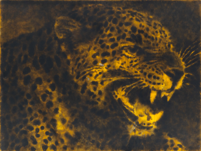 Jiří Georg Dokoupil, Gelber Leopard, 2018, Ruß und Farbe auf Leinwand, 105 x 140 cm